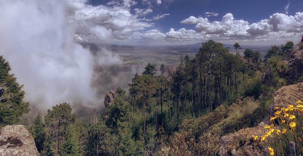 Parque-natural-el-rey-Fotográfo-Ignacio Arcas