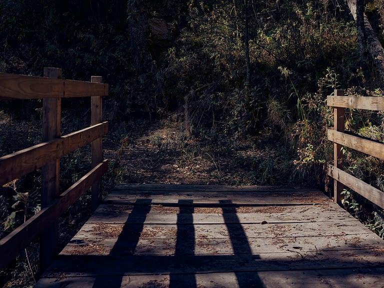 Puente de acceso al parque natural el rey