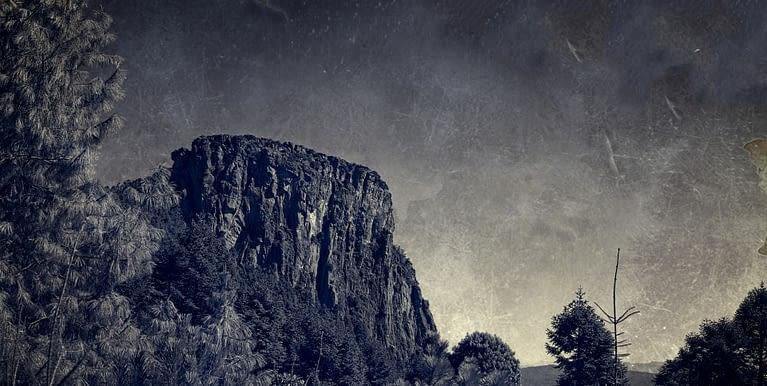 Parque Natural el Rey y su  bosque mágico